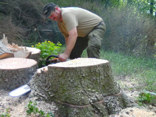 Joachim Gass Garten Und Landschaftsbau Bäume Und Wurzeln Entfernen